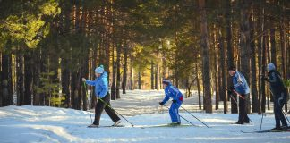 Skiing Became The Sport It Is Today